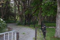 Farm_-_Driveway